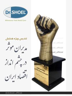 تندیس ویژه همایش مدیران موثر در چشم انداز اقتصاد ایران
